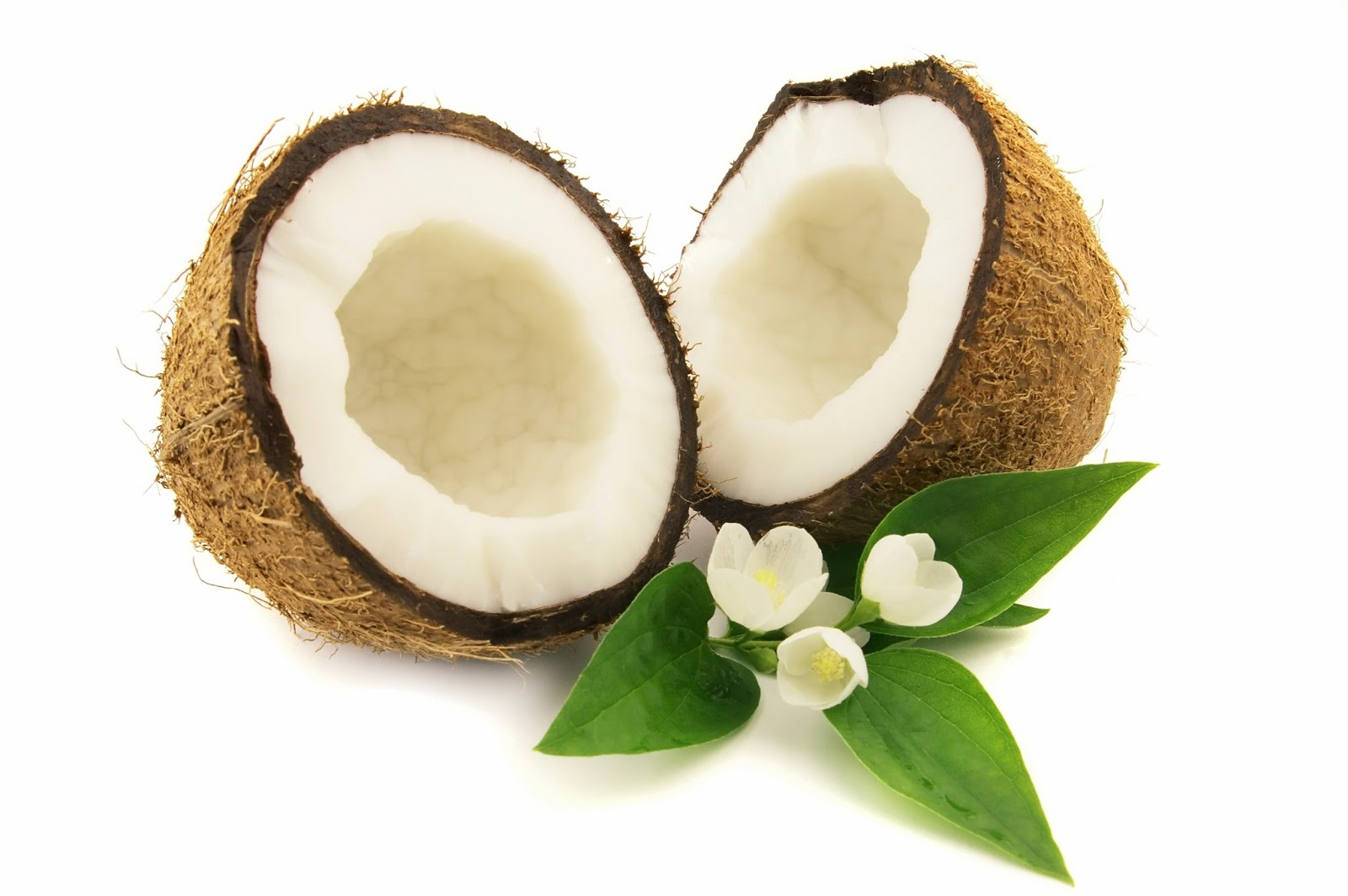 Hi-Res-Large-Coconut