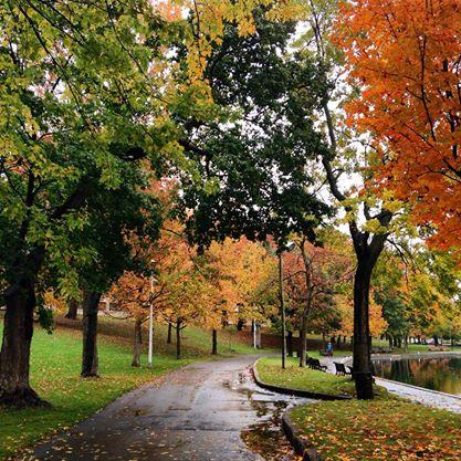 Montréal credit: biobeaubon